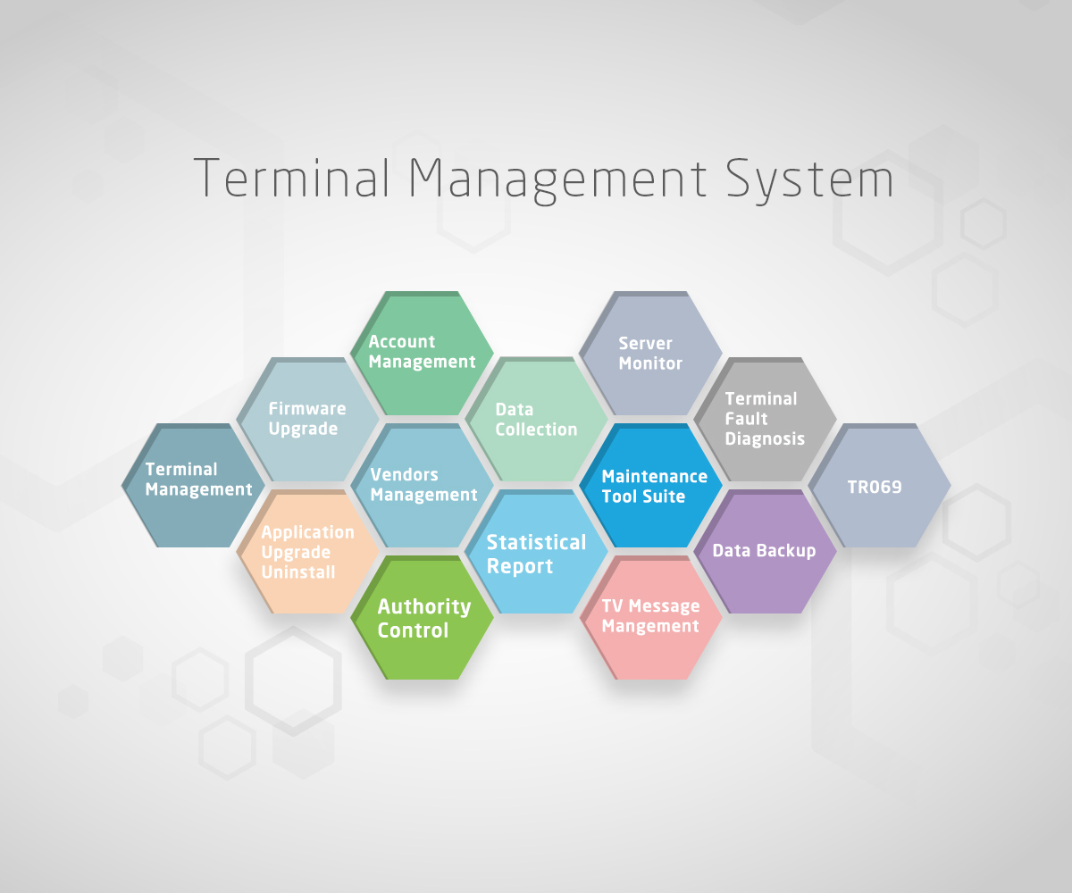 Terminal Management System