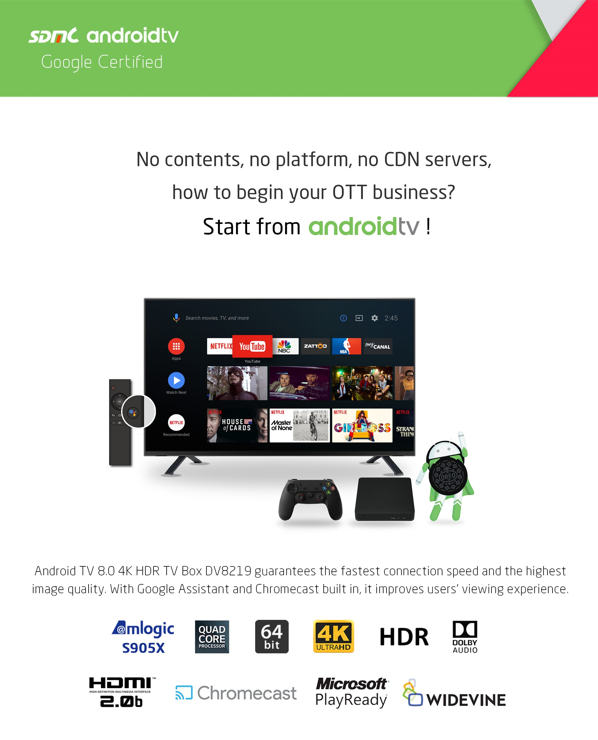 Google Certified 4K OTT TV Box DV8219